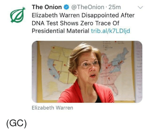 Check Out Our Exclusive Q&A with Elizabeth Warren Memes