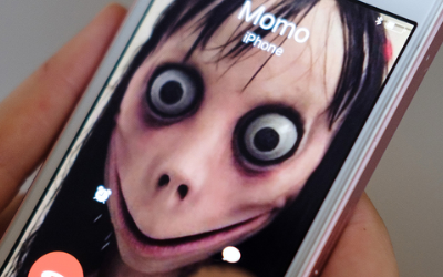 Why Would North Schuylkill Schools Tell Kids About Momo Challenge?