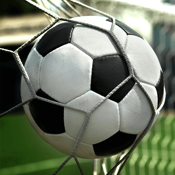 2019 Schuylkill League Girls Soccer Schedule and Results