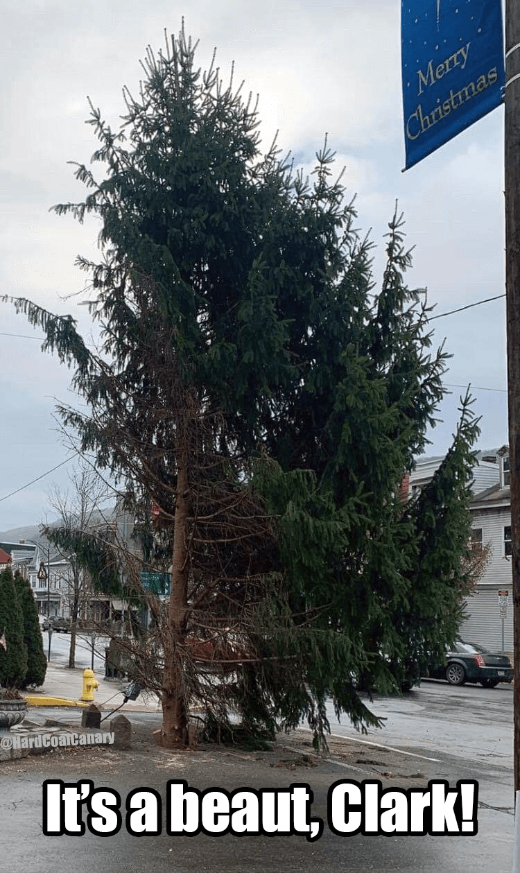 ashland pa christmas tree