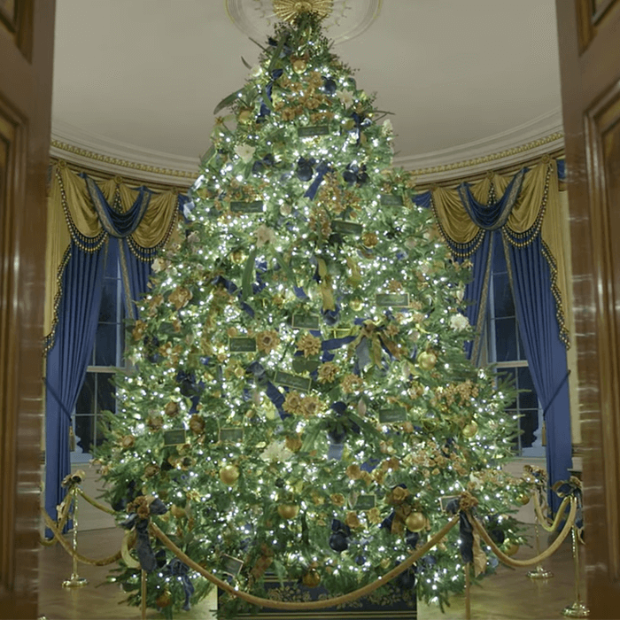 First Lady Melania Trump Unveils Schuylkill County's Christmas Tree Decorated at White House