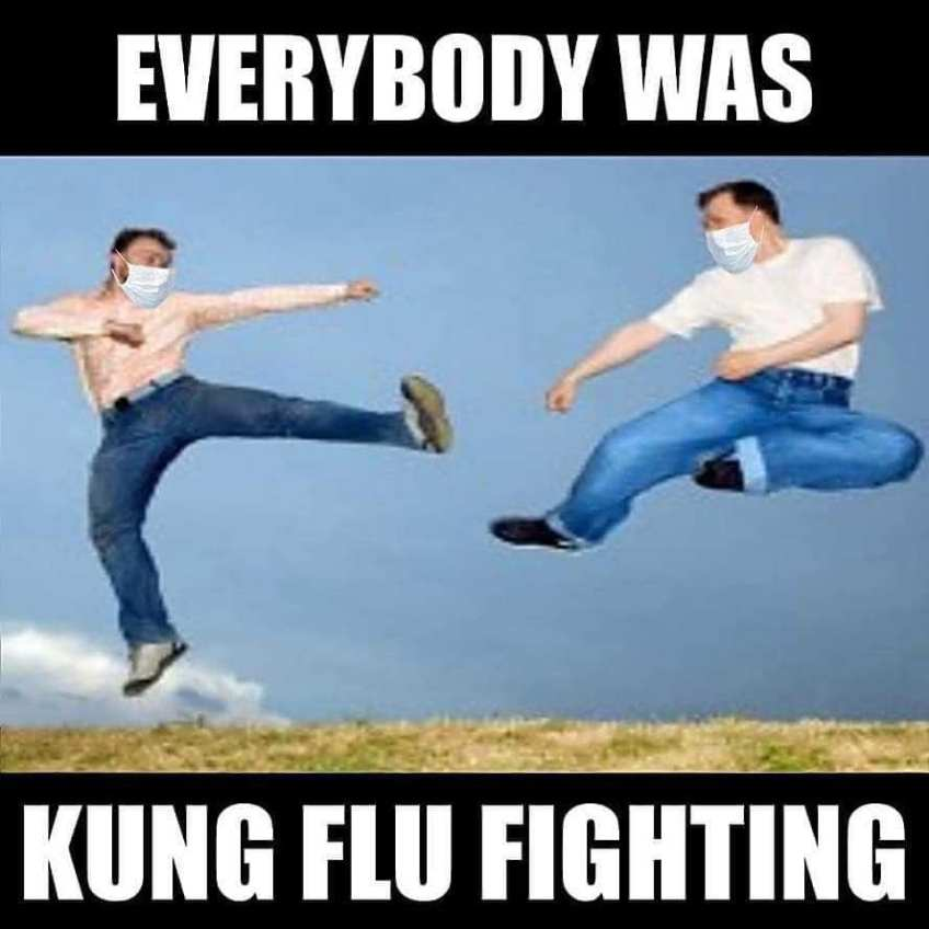 kung flu fighting meme