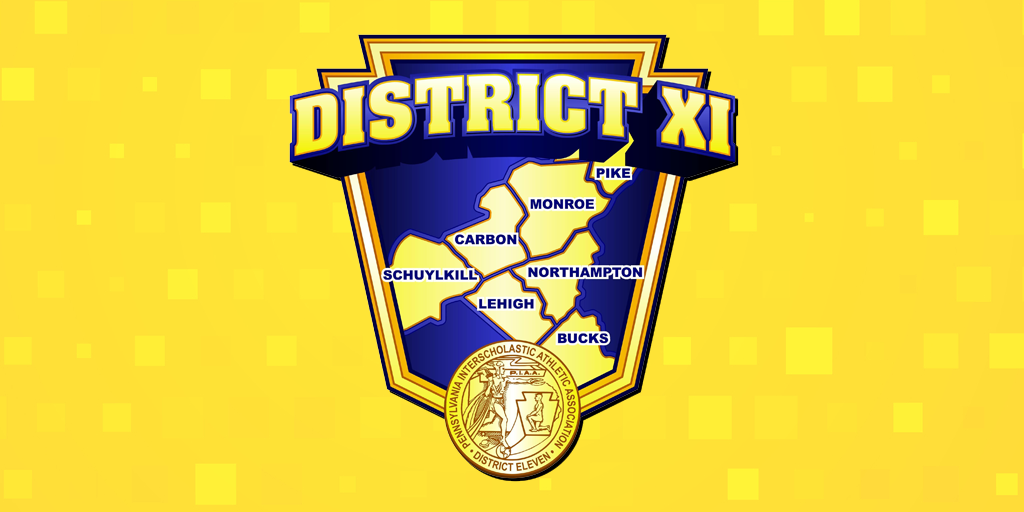 Nativity, North Schuylkill, Blue Mountain, Panther Valley, Mahanoy Area Win District XI Basketball Titles