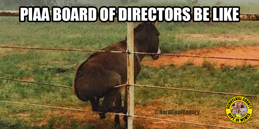 piaa board of directors meme