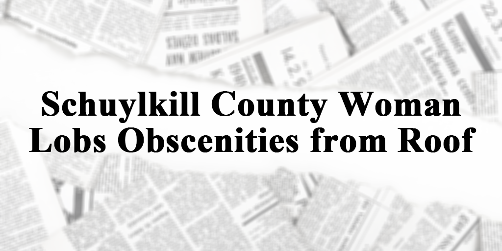 schuylkill county woman lobs obscenties from roof