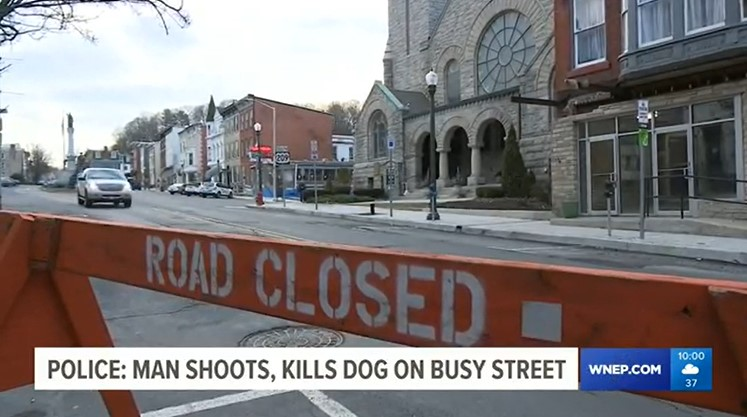 Pottsville Man Shoots Dog and Owner Downtown in Broad Daylight
