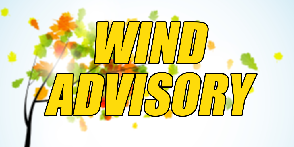 Wind Advisory Issued for Schuylkill County on Friday – Gusts to 50 mph