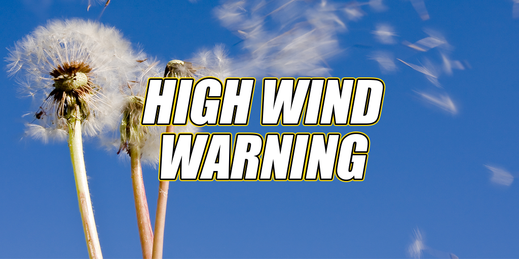 High Wind Warning – 60 MPH Gusts Expected in Schuylkill County Friday