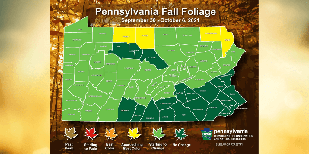 Fall Foliage Season in Schuylkill County About 3 Weeks Away