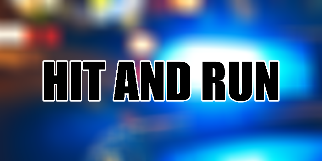 hit and run donaldson fire police